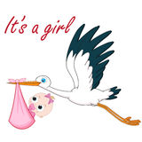 Stork and baby girl Stock Image