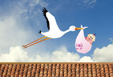 Stork with baby Royalty Free Stock Images