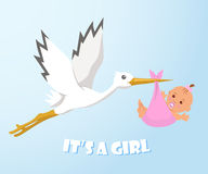 Stork and baby. Stork carries a baby in a diaper. Royalty Free Stock Image