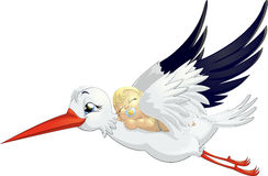 Stork. Beautiful stork that brought a newly born child, parents Royalty Free Stock Photos