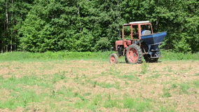 Stork bird in agriculture field and tractor sow buckwheat seeds Royalty Free Stock Images