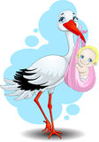 The stork brings the child. Stork who keeps the baby in a diaper Royalty Free Stock Photo