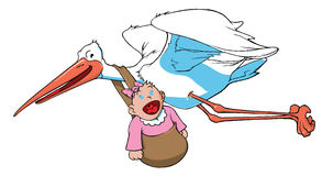 Stork carrying a baby Royalty Free Stock Image