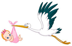 Stork and baby girl. Stork carrying a baby girl Royalty Free Stock Photo