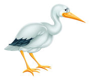 Stork Cartoon Stock Images