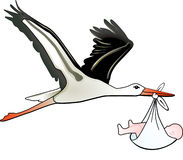 Stork childbirth royalty free stock photos
