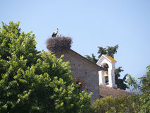 Stork on Church at Skala Kalloni Lesvos Greece Royalty Free Stock Image