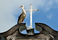 Stork and a cross Royalty Free Stock Photos