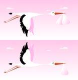 Stork Delivering Babies. Illustration of a cartoon stork delivering girl baby and twins babies Stock Photography