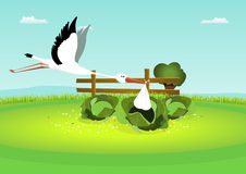 Stork Delivering Baby in Cabbage. Illustration of a stork delivering a blanket, with baby inside, in a cabbage Stock Image