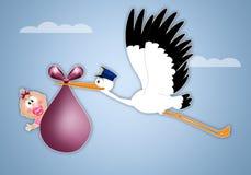 Stork delivering baby girl for birth. Illustration of stork delivering newborn girl Royalty Free Stock Image