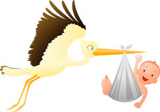 Stork delivering baby Royalty Free Stock Image