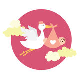 Stork delivering newborn baby girl. Vector illustration of a stork delivering newborn baby girl Royalty Free Illustration