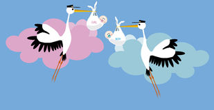 Stork delivering. A newborn  boy and girl Stock Photography