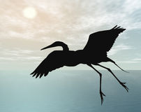 Stork, flying at dusk Royalty Free Stock Photos