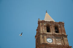 Stork flying in extremadura, spain. In Alange Royalty Free Stock Image