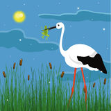 Stork and frog Royalty Free Stock Images