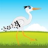 Stork on glade Royalty Free Stock Photos