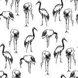 Stork Heron crane pen sketch seamless pattern Royalty Free Stock Image