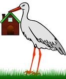 A stork with a house. A stork in the grass holds a house in its beak Royalty Free Stock Images