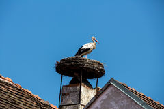 Stork on a house in rust Stock Photos