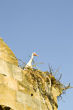 Stork in its nest perched on the portico Royalty Free Stock Image
