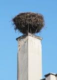 Stork nest Stock Photo