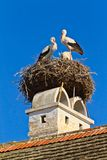 Stork nest in a Austrian village Rust.  Royalty Free Stock Image