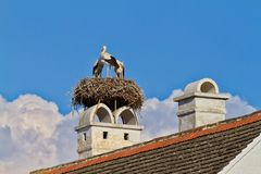 Stork nest in a Austrian village Rust.  Royalty Free Stock Images
