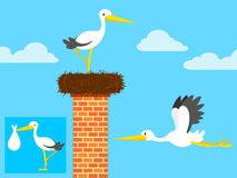 Stork in nest on chimney and flying Stock Image