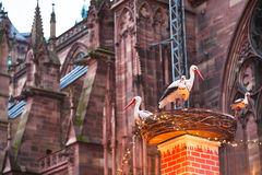 Stork nest near cathedral in christma Stock Photo