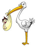 Stork with new born baby Stock Photos