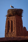 Stork on the old kasbah tower, Morocco. Stock Images