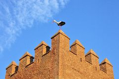 Stork On Fortress Wall Royalty Free Stock Photography