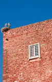 Stork on a roof top. Portugal stock photos