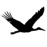 Stork silhouette. Stock Image