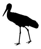 Stork silhouette Royalty Free Stock Photography