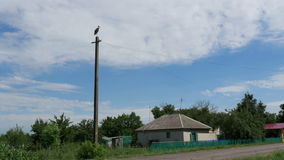 Stork sits on a pole in the village and moving clouds. Stork sits on a pole in the background of a village and moving clouds in a blue sky. Stork sitting on a stock footage