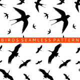 Stork swallow seamless pattern Royalty Free Stock Photography