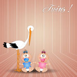 Stork with twins, male and female Stock Image
