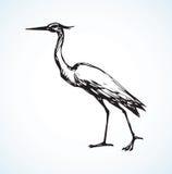 Stork. Vector drawing Stock Photo