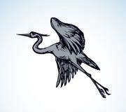 Stork. Vector drawing Royalty Free Stock Photo