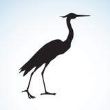 Stork. Vector drawing Stock Photos