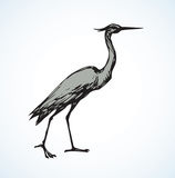 Stork. Vector drawing Stock Photos