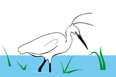 Stork walking on water, vector Stock Image