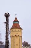 Stork and water tower in Rastatt Royalty Free Stock Photo