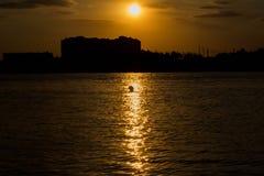 Storkar i sjön från Ryssland fotografering för bildbyråer