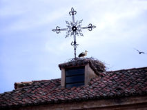Storkar på taket av ett lantligt hus Fotografering för Bildbyråer