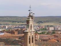 Storkrede på klockstapelöverkanten Avilla Spanien Royaltyfria Foton