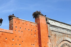 Storks on Bab Agnaou door, Marrakesh. Storks and their nests on Bab Agnaou door, Marrakesh Royalty Free Stock Photo